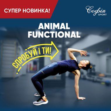 Animal functional